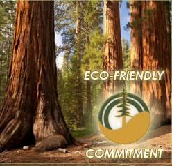eco friendly wood swing sets