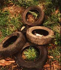 beware of using old or used tires for your tire swing. Black Bedroom Furniture Sets. Home Design Ideas