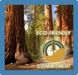 earth friendly wood swing sets